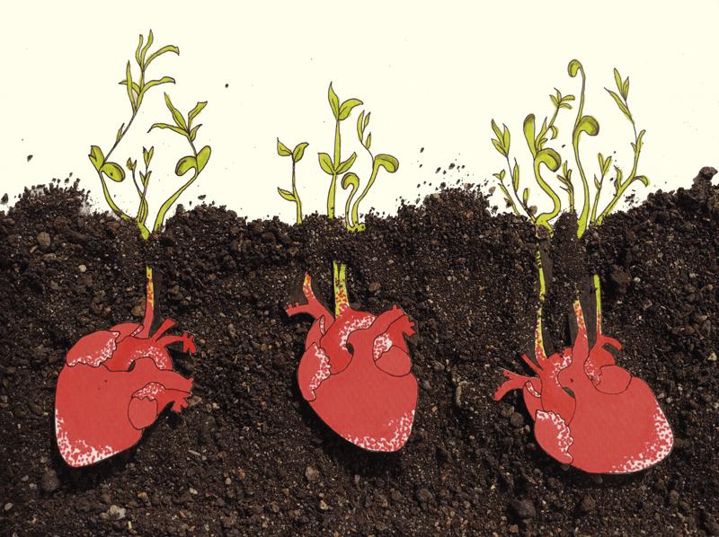 ilustração referente à oficina Germina Corações. Na ilustração estão representados três corações vermelhos debaixo de terra, de onde germinam umas plantas verdes.