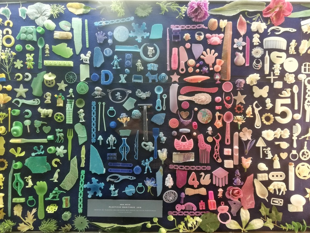 Muitos objectos de plásticos recolhidos do mar, organizados por cores: verde, azul, rosa e amarelo.